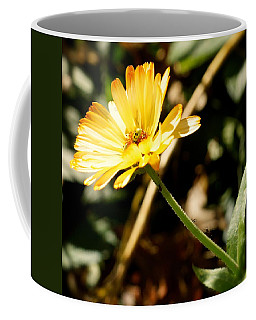 Coffee Mug featuring the photograph Parade by Photographic Arts And Design Studio
