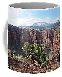 Parker Canyon In The Sierra Ancha Arizona Coffee Mug by Tom Janca