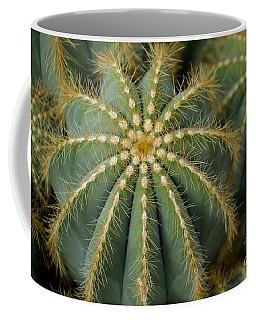 Parodia Magnifica Coffee Mug