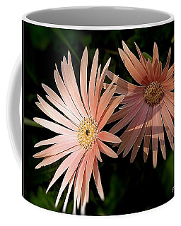 Coffee Mug featuring the photograph Party Girls by Wallaroo Images
