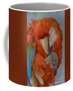 Pass The Hand Lotion Please Coffee Mug by Anne Rodkin