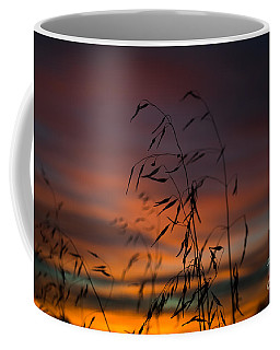 Pastel Moment Coffee Mug