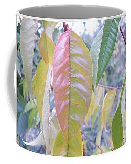 Pastel Symmetry  Coffee Mug by Brian Boyle