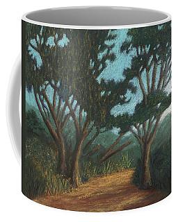 Path By Lake Murray 01 Coffee Mug