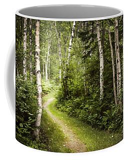 Path In Birch Forest Coffee Mug