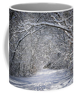 Path In Snowy Winter Forests Coffee Mug
