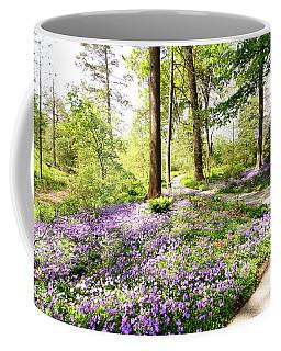 Path Of Serenity Coffee Mug