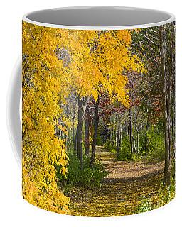 Path Through Autumn Trees Coffee Mug