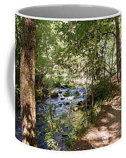 Coffee Mug featuring the photograph Pathway Along The Springs by John M Bailey