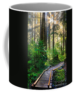 Pathway Into The Light Coffee Mug