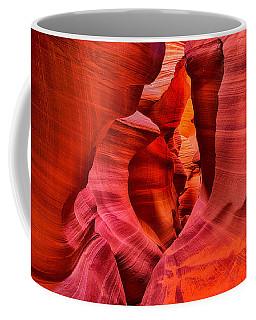 Pathway To Beauty Coffee Mug