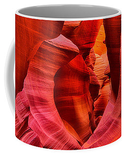 Pathway To Beauty Coffee Mug