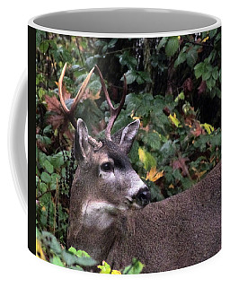 Coffee Mug featuring the photograph Patriarch by I'ina Van Lawick