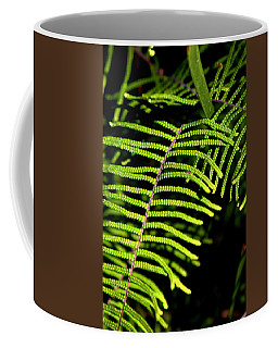 Coffee Mug featuring the photograph Pauched Coral Fern by Miroslava Jurcik