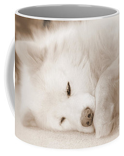 Pawsome Coffee Mug by Fiona Kennard