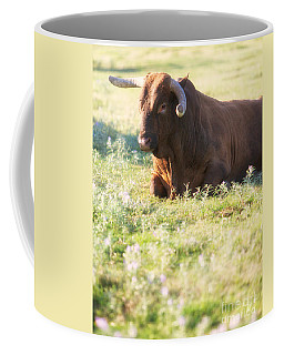 Coffee Mug featuring the photograph Peaceful by Erika Weber