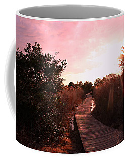 Coffee Mug featuring the photograph Peaceful Path by Karen Silvestri