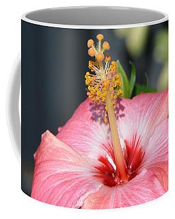 Peaceful Tingles - Signed Coffee Mug