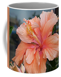 Coffee Mug featuring the photograph Peach And Cream by Lingfai Leung