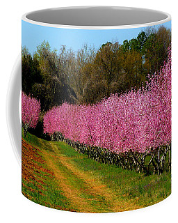 Coffee Mug featuring the photograph Peach Orchard In Carolina by Lydia Holly