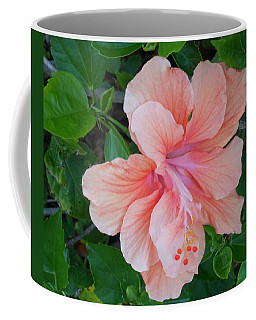 Peachy Hibiscus Coffee Mug by Kay Gilley