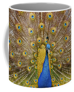 Peacock Courting Coffee Mug by Charles Beeler