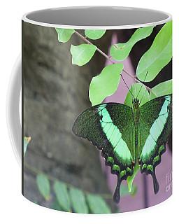 Coffee Mug featuring the photograph Peacock Swallowtail by Lingfai Leung