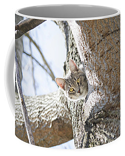Peaking Cat Coffee Mug