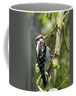 Coffee Mug featuring the photograph Peanut Butter Loving Red Caucated Woodpecker by Belinda Lee