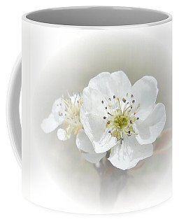 Coffee Mug featuring the photograph Pear Blossom by Judy Hall-Folde