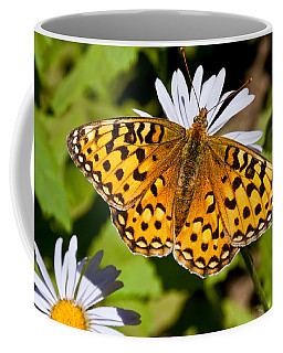 Pearl Border Fritillary Butterfly On An Aster Bloom Coffee Mug by Jeff Goulden