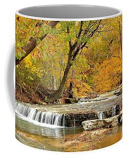Pedelo Falls Coffee Mug