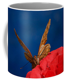 Coffee Mug featuring the photograph Peek A Boo by Beth Sargent