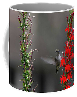 Coffee Mug featuring the photograph Peek A Boo by Judy Wolinsky