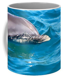 Peeking Dolphin Coffee Mug by Debra Forand