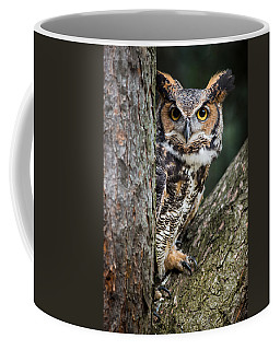Peering Out Coffee Mug