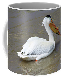 Coffee Mug featuring the photograph Pelecanus Eerythrorhynchos by Alyce Taylor