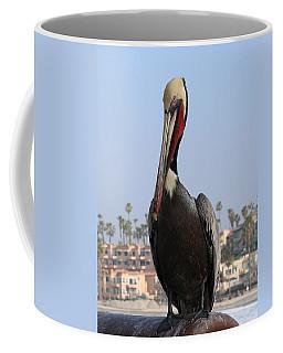 Pelican - 2  Coffee Mug