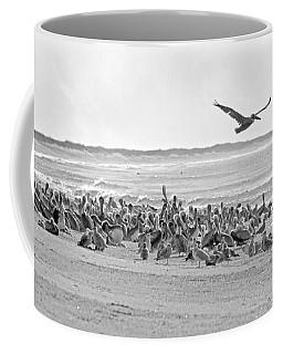 Pelican Convention  Coffee Mug