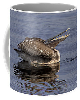 Pelican Fountain  Coffee Mug