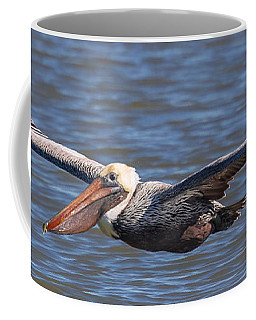Pelican In Flight Coffee Mug