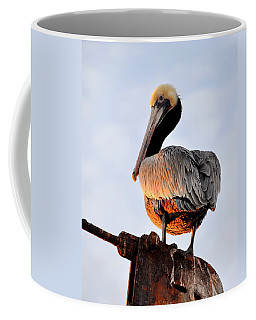 Pelican Looking Back Coffee Mug by AJ  Schibig