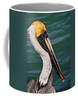 Pelican Profile No.40 Coffee Mug
