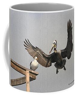 Pelican Wins Sea Gull Looses Coffee Mug by Tom Janca