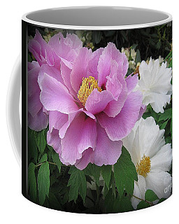 Peonies In White And Lavender Coffee Mug