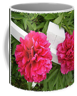 Peonies Resting On White Fence Coffee Mug by Barbara Griffin