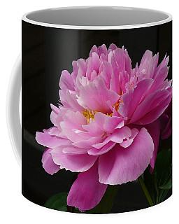 Coffee Mug featuring the photograph Peony Blossoms by Lingfai Leung