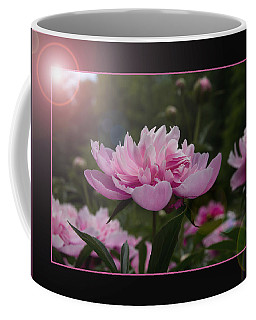 Coffee Mug featuring the photograph Peony Garden Sun Flare by Patti Deters