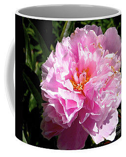 Coffee Mug featuring the photograph Peony by Sher Nasser
