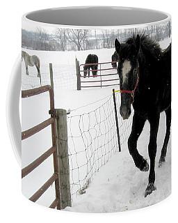 Percheron Horse Colt In Snow Coffee Mug